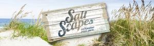 saltscapes_header